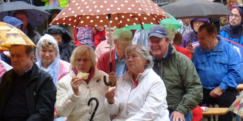 Publikum beim Altstadtfest (Foto: J.W. Hirschmann)